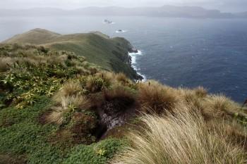 Parker S Island Thompson