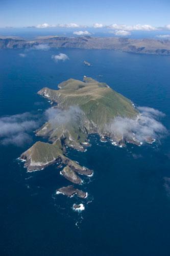 disappointment island  u2013 wikipedia