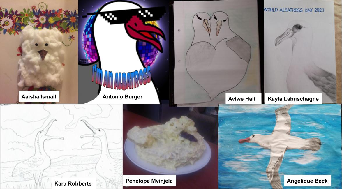 PH Albatross Creative Class Competition Winners 2