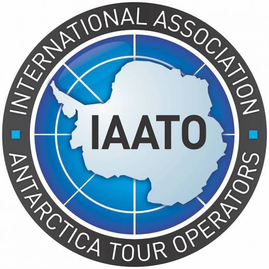 The International Association of Antarctica Tour Operators embraces the arrival of World Albatross Day in 2020