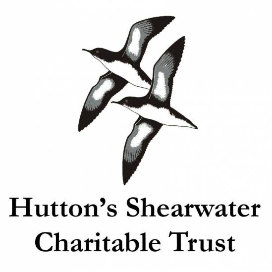 The Hutton's Shearwater Charitable Trust wholeheartedly endorses World Albatross Day