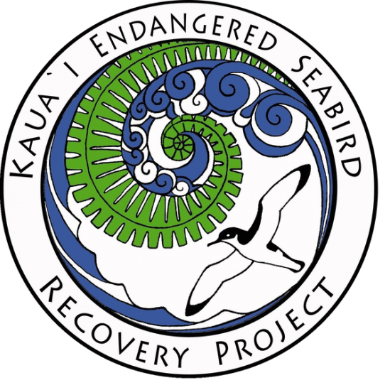 Kauaʻi Endangered Seabird Recovery Project to celebrate World Albatross Day next month