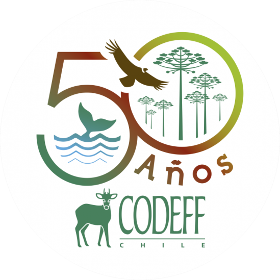CODEFF, BirdLife in Chile, joins with other South American NGOs in offering its support for World Albatross Day 2020