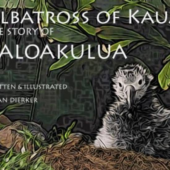 "Susan Dierker makes her children's book ""Albatross of Kaua'i.  The Story of Kaloakulua"" free online to mark World Albatross Day"