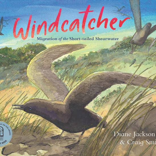 Windcatcher.  Follow the annual migration of the Short-tailed Shearwater in a children's book