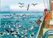 Fiche Pratique # 12 Pêche à la palangre de fond et pélagique : réduction des captures accidentelles